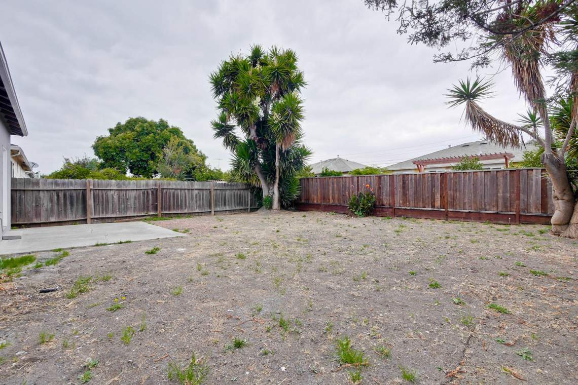 352 Azalia Drive East Palo-large-032-13-Backyard-1500x1000-72dpi
